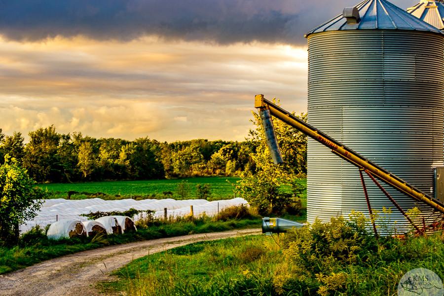 Fall at the farm silos