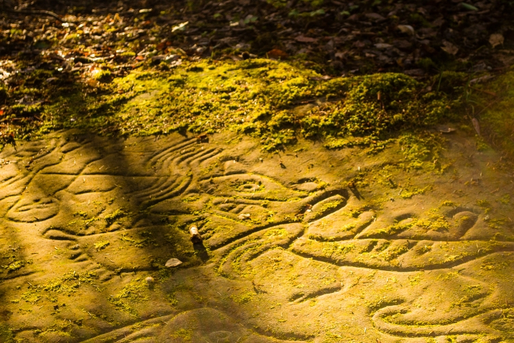 Petroglyph Provincial Park Nanaimo