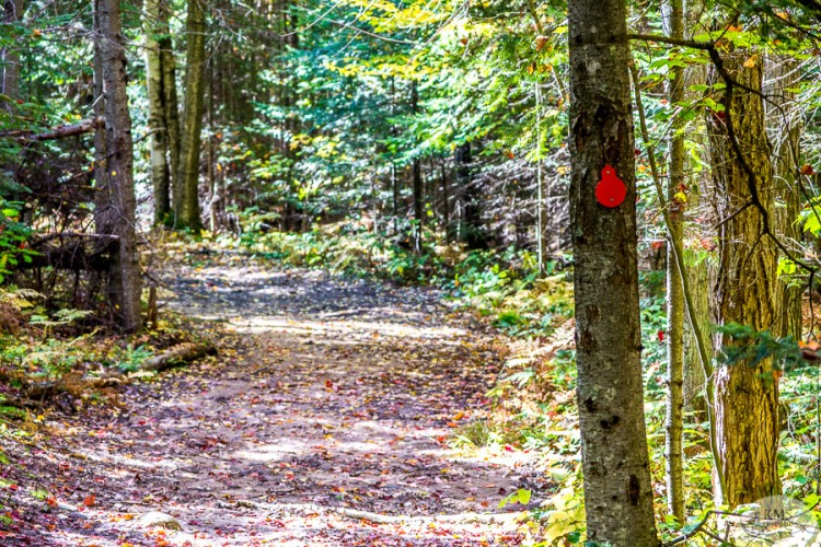 granite ridge trail start