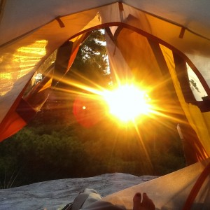 view from my tent on the French River