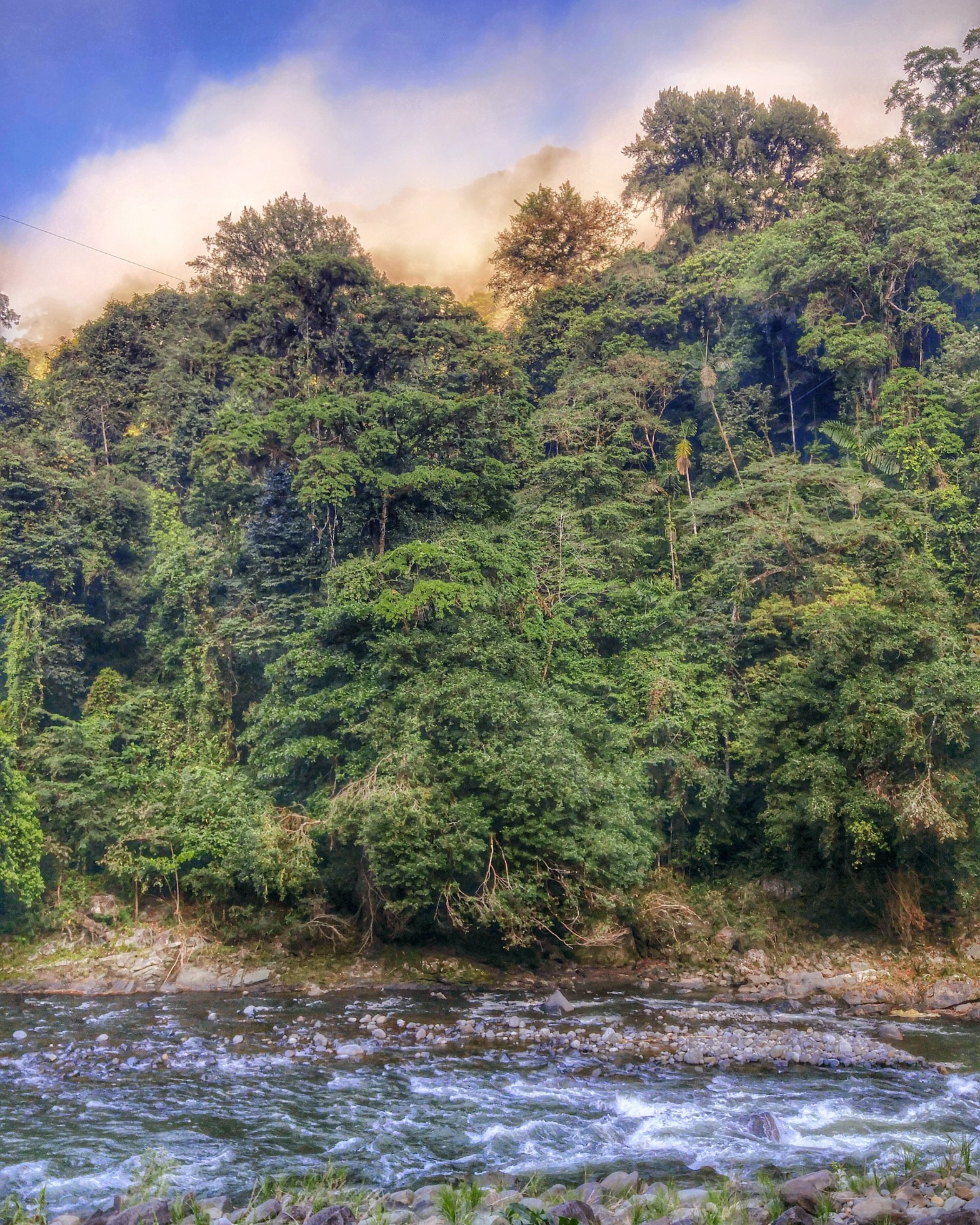 Costa Rica - Pacuare River - whitewater rafting