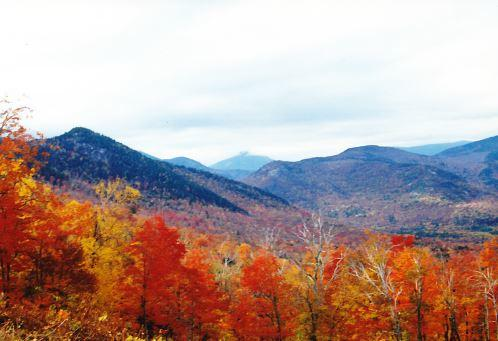 Fall in the White Mountains 2