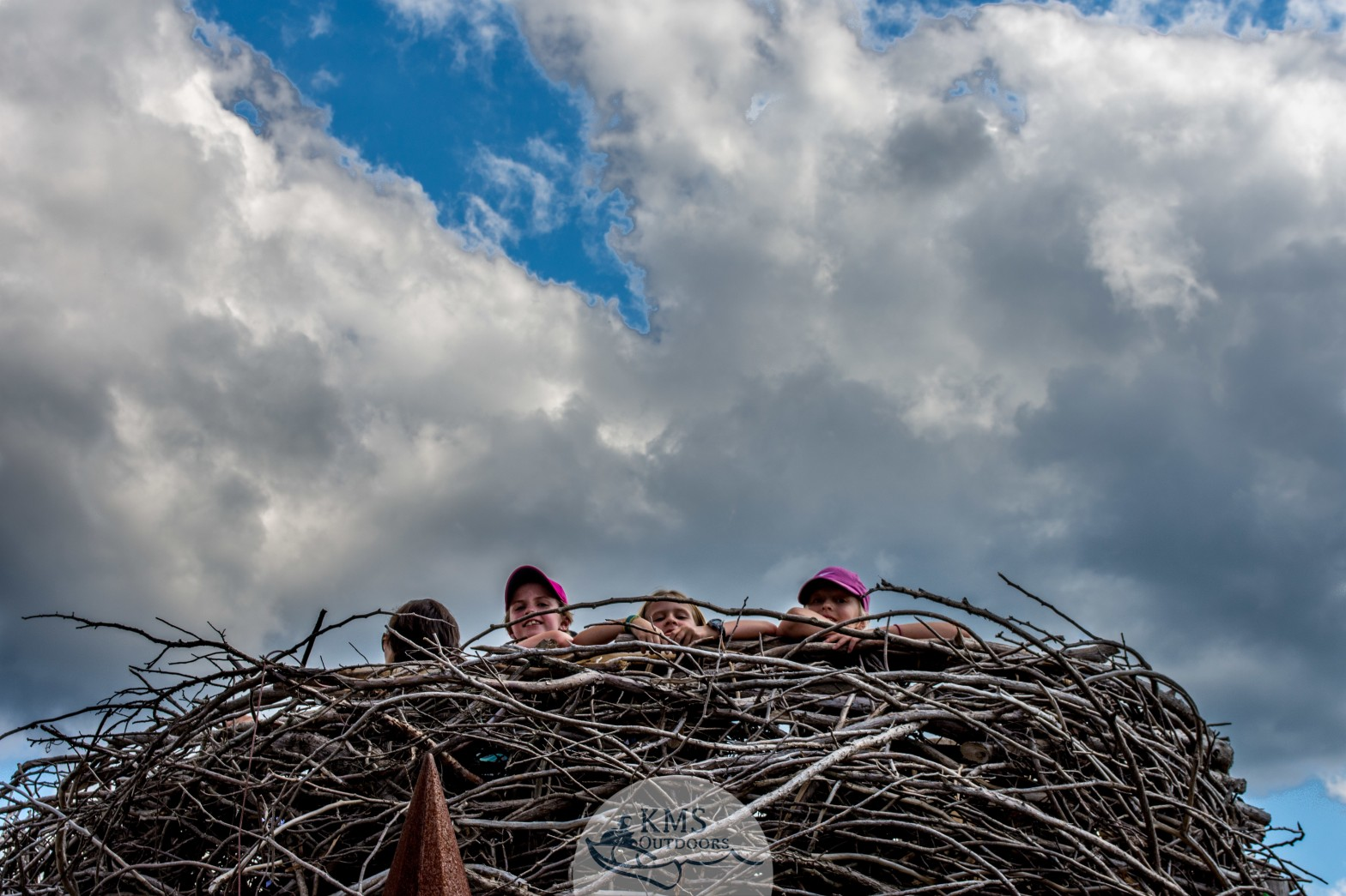 Eagle's nest at the Wild Center